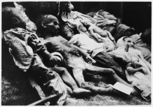 Murdered Emaciated Children